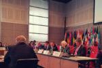 Amb. Verveer speaks at a OSCE meeting