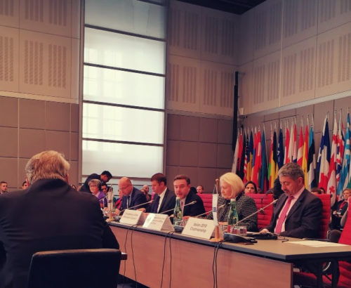 Amb. Verveer speaks at a OSCE meeting