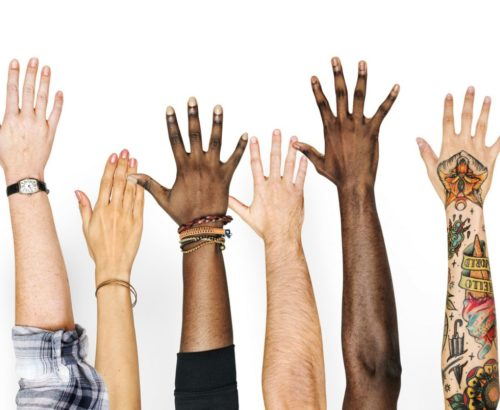 Diverse hands raised