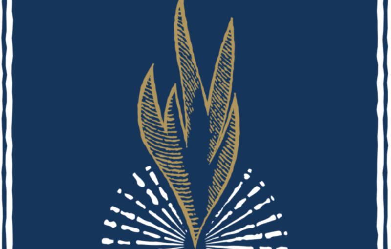 Scintilla Foundation logo