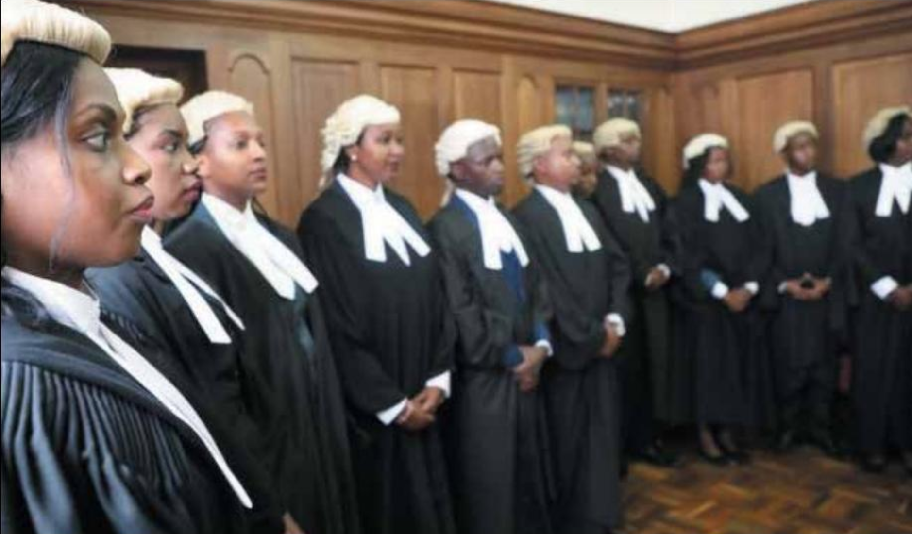 Photo of women judges standing in a row