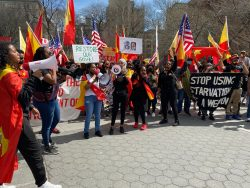 A photo of Tigrayans across the U.S. who came to New York in a protest calling for an end to the war and its war crimes, specifically addressing the Biden-Harris administration and the UN. The image illustrates events described in the blog post.
