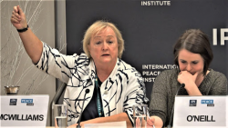 An image of Monica McWilliams speaking on a panel and raising her hand. Monica McWilliams is the author of the article on this page.