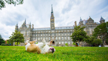 Link to Gender-Related Courses to Take at Georgetown in Spring 2022